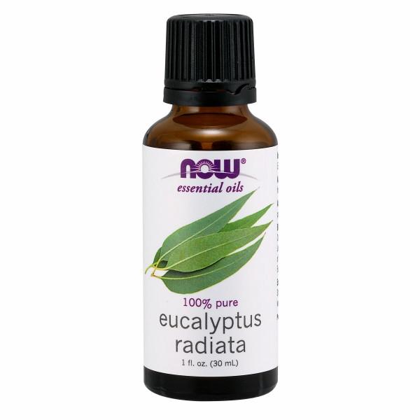 Eucalyptus Radiata 1 Oz by Now Foods