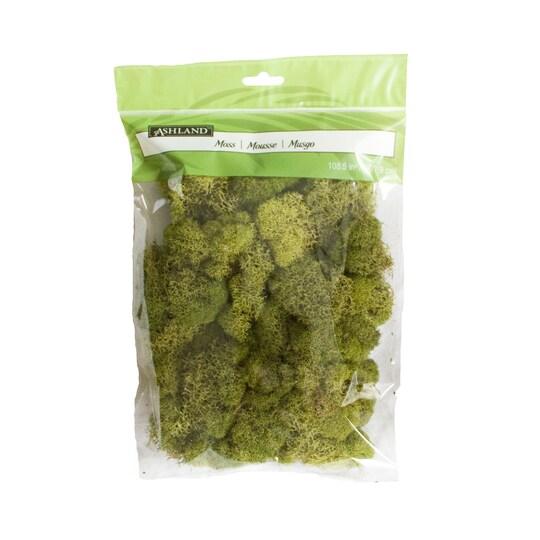 Ashland® Reindeer Moss in Spring Green | 108.5 cu in | Michaels®