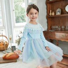 Toddler Girls Contrast Mesh Guipure Lace Trim Dress